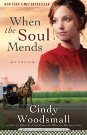 when-the-soul-mends